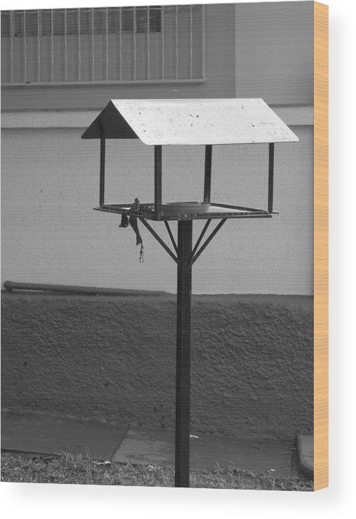 Bird Wood Print featuring the photograph The Bird House by Stivens Santos
