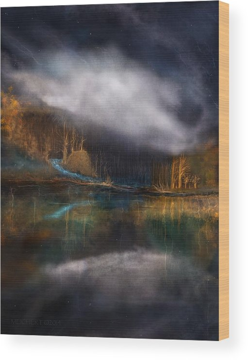 Landscape Wood Print featuring the digital art The Cove by Mary Eichert