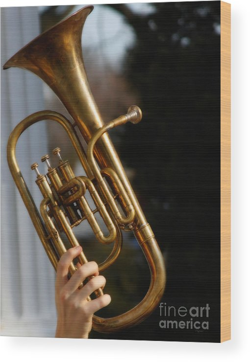 Music Wood Print featuring the photograph The Salute by Steven Digman