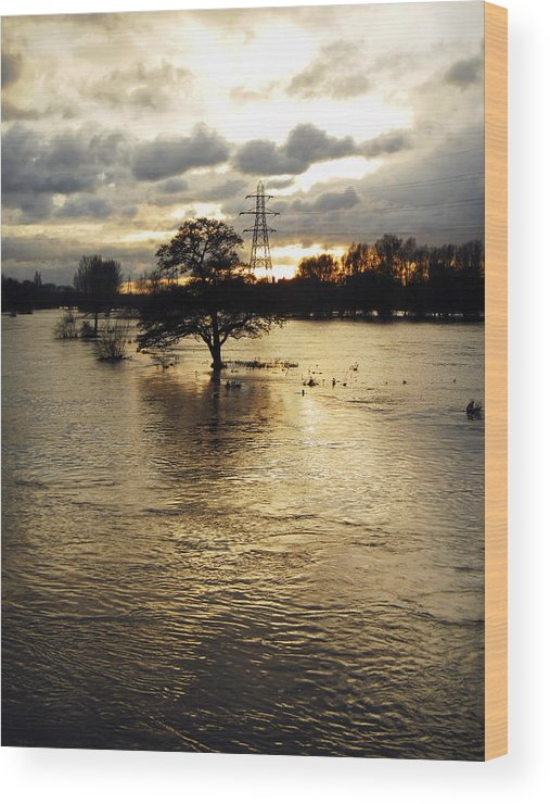 Burton On Trent Wood Print featuring the photograph The Trent Washlands In Full Flood by Rod Johnson