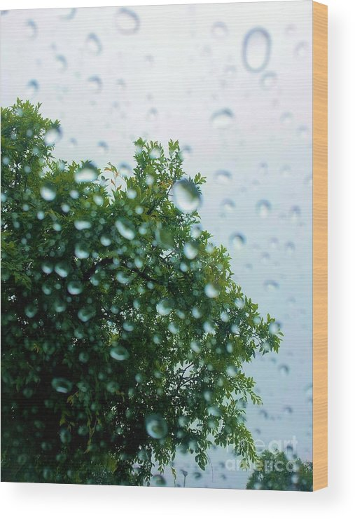 Tree Wood Print featuring the photograph Through The Rain by Tahlula Arts