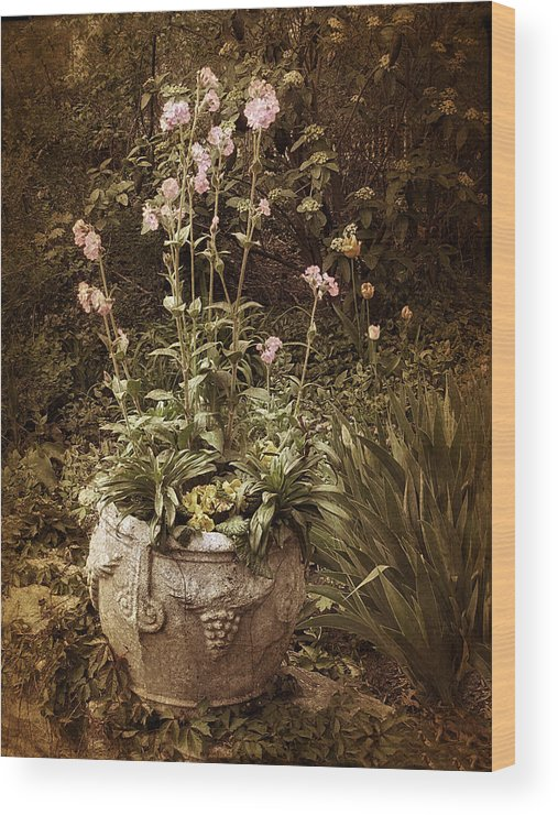 Planter Wood Print featuring the photograph Vintage Planter by Jessica Jenney