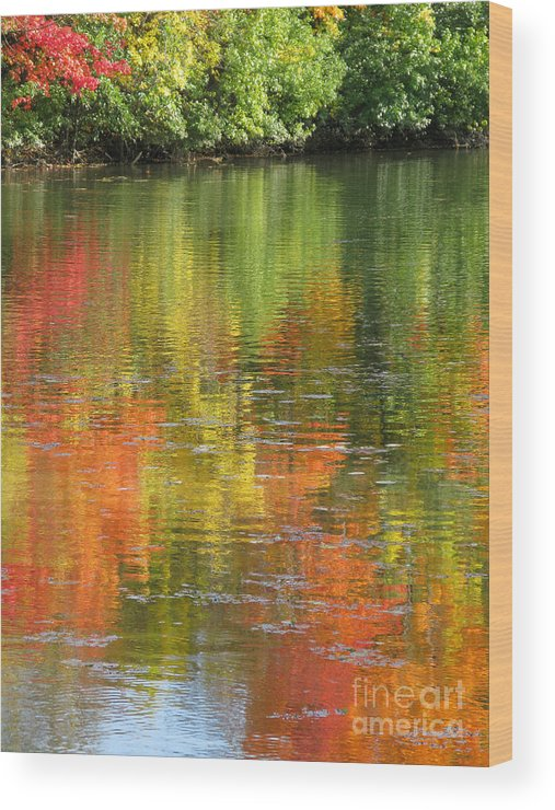 Autumn Wood Print featuring the photograph Water Colors by Ann Horn