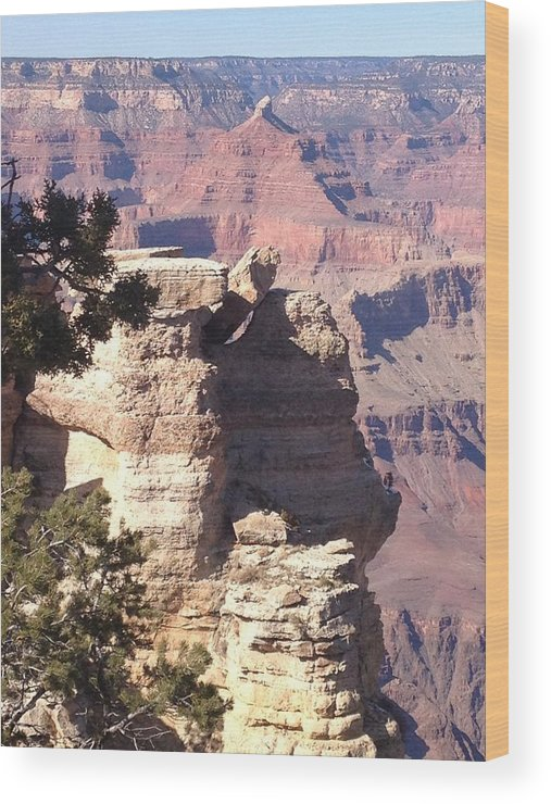 Arizona Wood Print featuring the photograph Winter Canyon by Monica Salyer