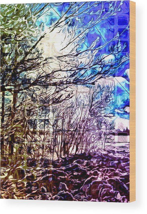 Wood Print featuring the digital art Winter Mosaic by Kilmeny Boates