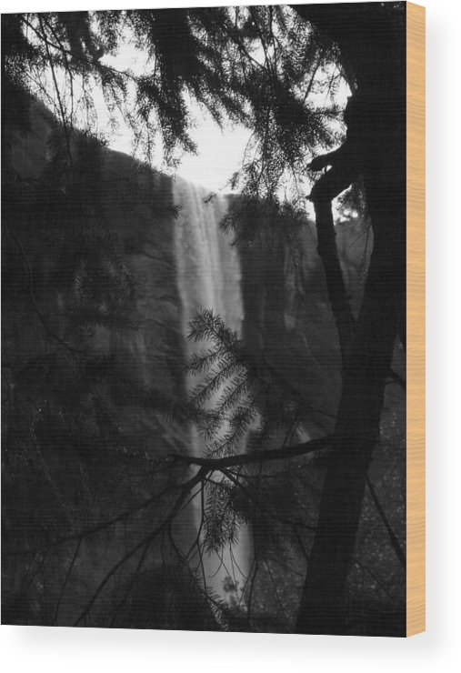 Bridalveil Wood Print featuring the photograph Bridalveil In Background Black And White by April Julian
