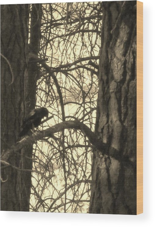 Crow Wood Print featuring the photograph Crow In Thought by Tracy Fallstrom