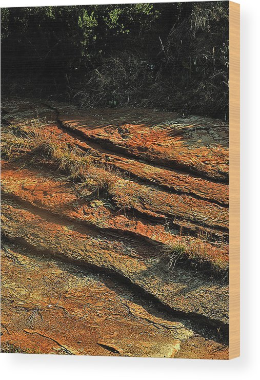 Landscape Wood Print featuring the photograph Dry River Country by Louis Nugent