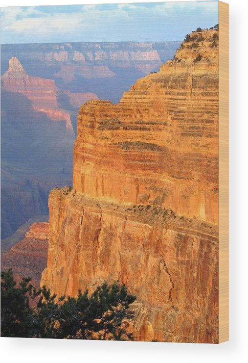 Grand Canyon Wood Print featuring the photograph Grand Canyon 27 by Will Borden