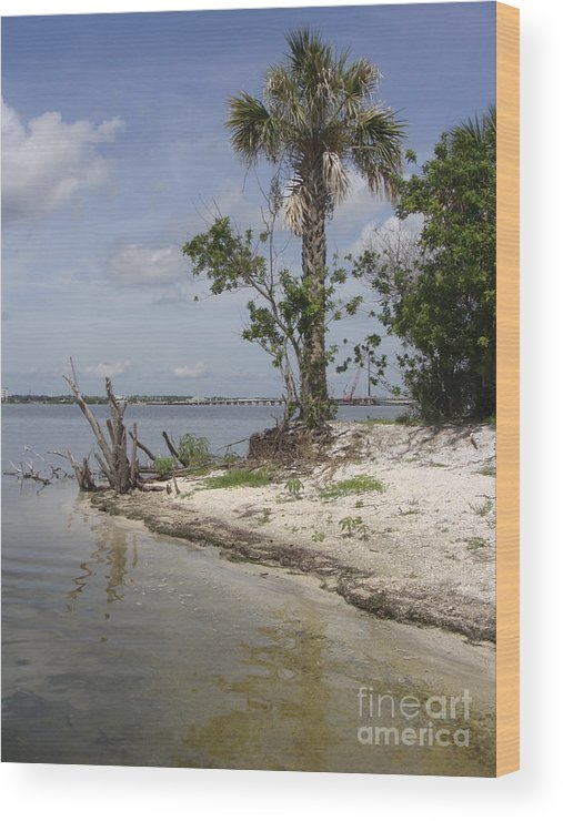 Beach Wood Print featuring the photograph Island Florida by Jack Norton
