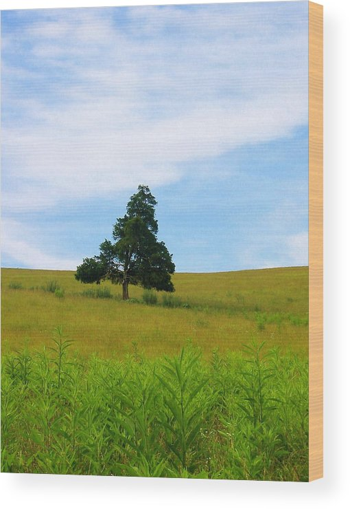 Landscape Photo Wood Print featuring the photograph Lone Tree by Sarah Gayle Carter