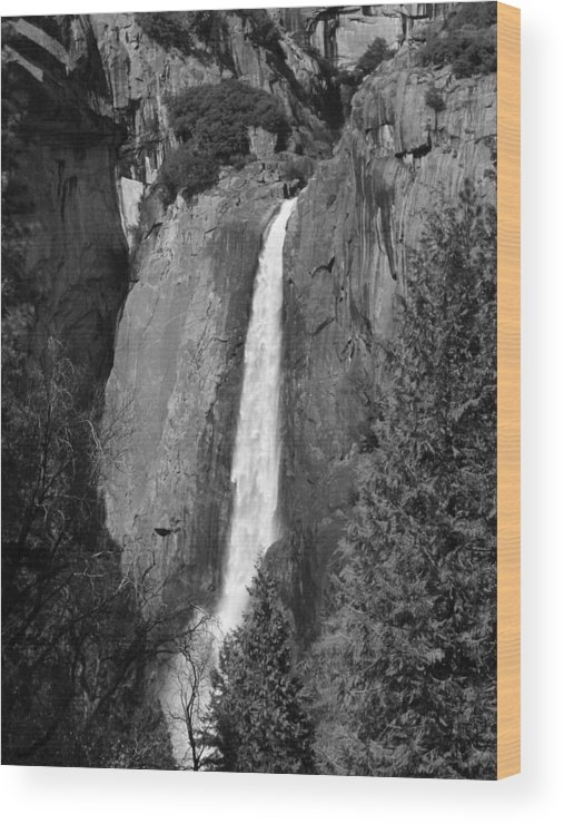 Lower Yosemite Fall Wood Print featuring the photograph Lower Yosemite Falls by April Julian