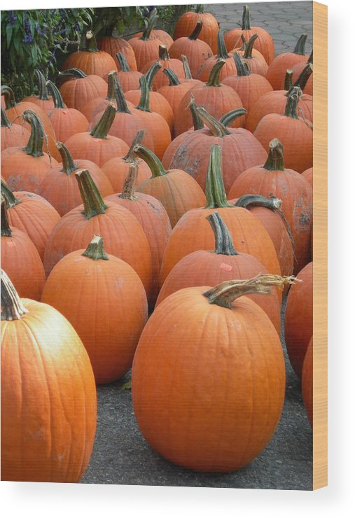 Pumpkins Wood Print featuring the photograph Rustic Acres I by Sheila Rodgers