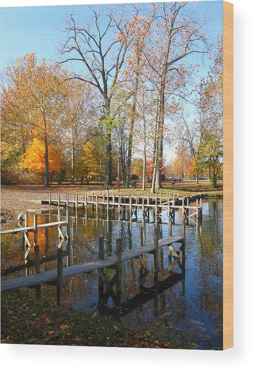 Landscape Wood Print featuring the photograph Taughannock Marina by Ian Stevenson