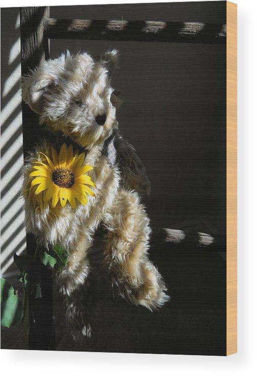 Teddy Bear Wood Print featuring the photograph Teddy Bear by Lynnette Johns