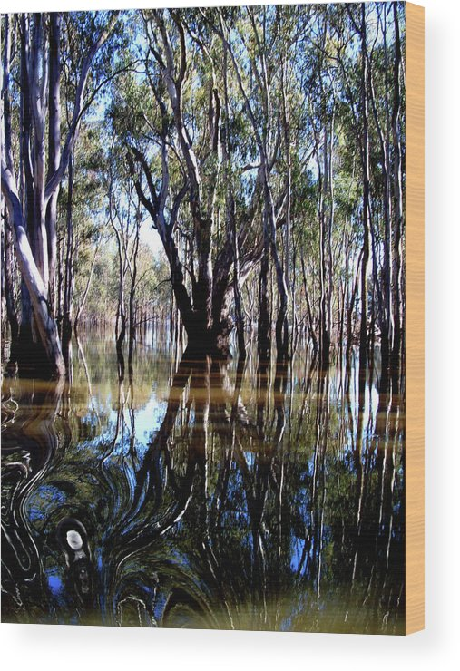 Landscape Photography Wood Print featuring the photograph The Forest by Karen Elzinga