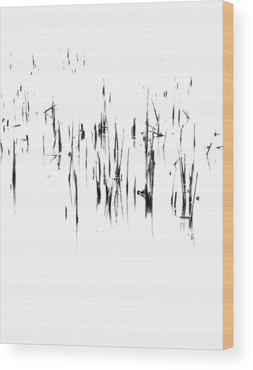 Tiwago Wood Print featuring the photograph Brushstrokes by Photography by Tiwago