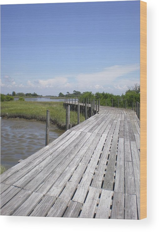 Plank Wood Print featuring the photograph Plank Passage by Jeffrey Zipay