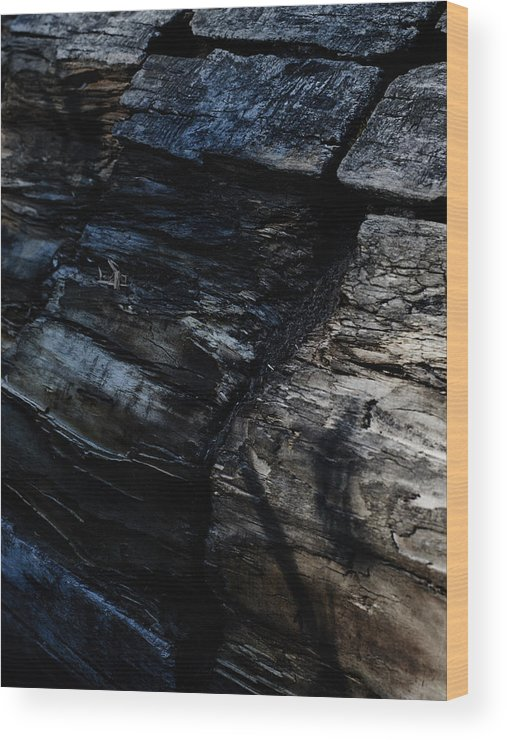 Wood Wood Print featuring the photograph Bark by Stanislav Martynov