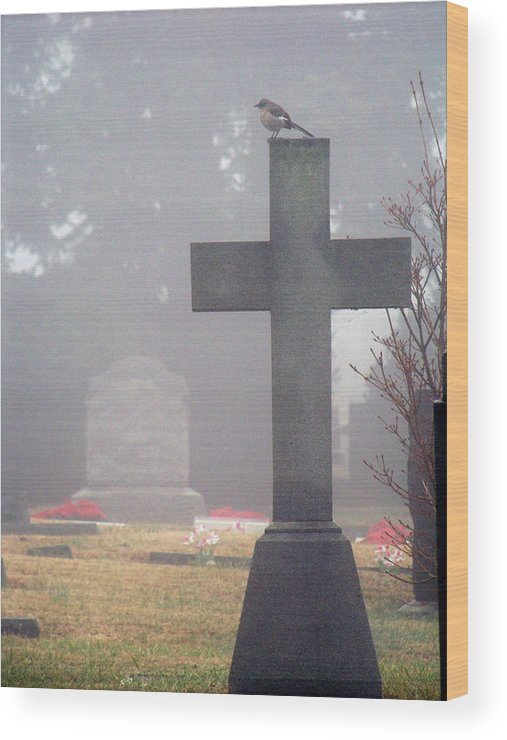 Fog Wood Print featuring the photograph 9000-foggy Morning by Martha Abell