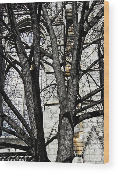 Church Wood Print featuring the photograph Architecture by Sarah Loft