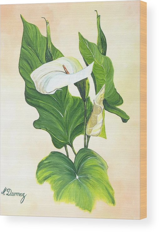 Flowers Wood Print featuring the painting Arums by Murielle Hebert