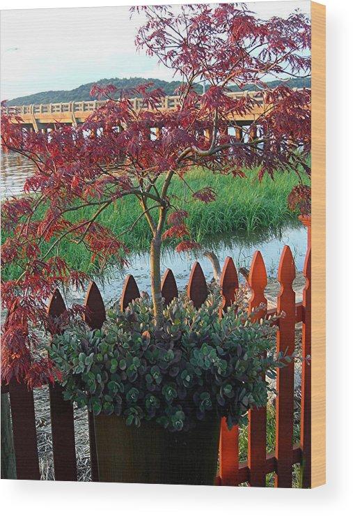 Wood Print featuring the photograph Autumn Bridge by Caroline Urbania Naeem