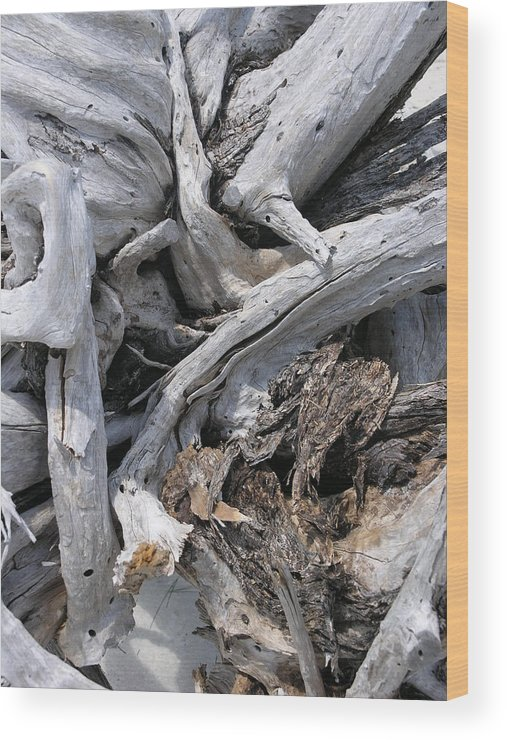 Driftwood Wood Print featuring the photograph Beachwood by Jim Derks