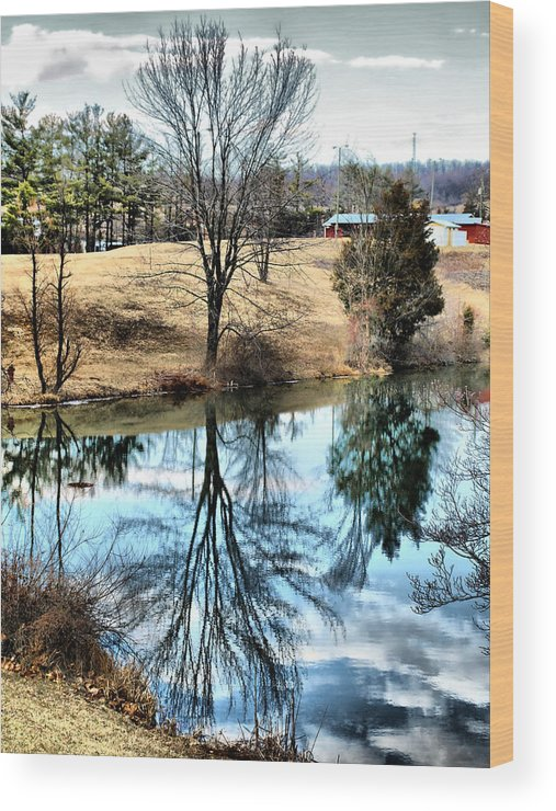 Pond Wood Print featuring the photograph Beautiful Reflection 2 by Kathy Jennings