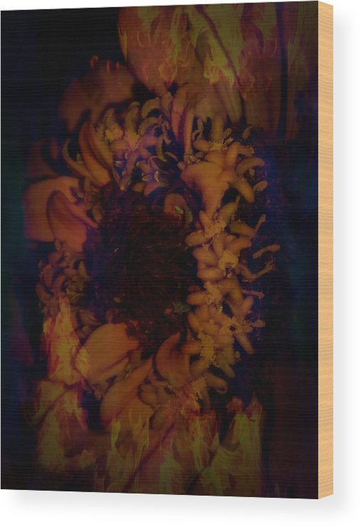 Burning Wood Print featuring the photograph Burning Flower by Nick Photography