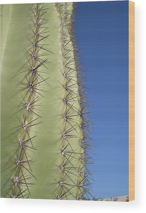 Desert Wood Print featuring the photograph Cactus Side View by Aleksandra Buha