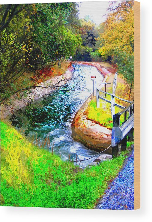 Wood Print featuring the digital art Canal by Danielle Stephenson