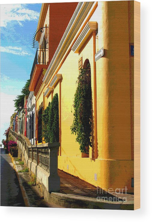 Darian Day Wood Print featuring the photograph Casas On The Hill By Darian Day by Mexicolors Art Photography