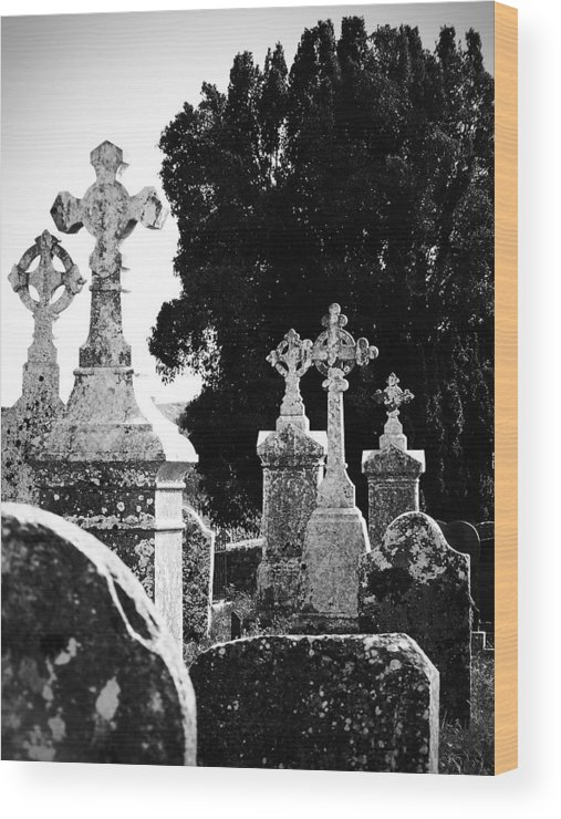 Celtic Wood Print featuring the photograph Celtic Crosses At Fuerty Cemetery Roscommon Ireland by Teresa Mucha