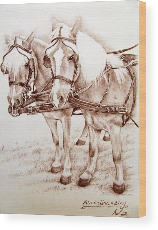 Horses Wood Print featuring the drawing Coach Horses by Nicole Zeug