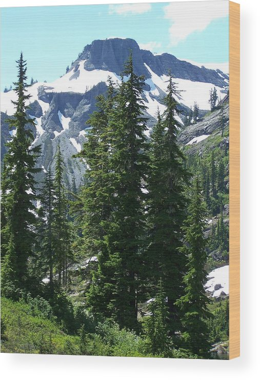 Mountain Peak Wood Print featuring the photograph Coleman Pinnacle 2 by Gene Ritchhart