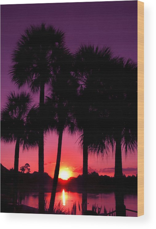 Sunrise Wood Print featuring the photograph Dawn Of Another Perfect Day by Kenneth Krolikowski