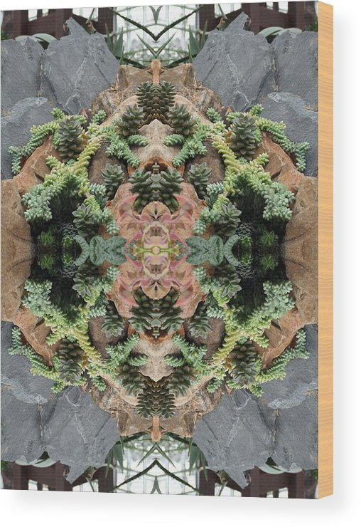 Desert Wood Print featuring the photograph Desert Series 1 Of 4 by Keri Renee