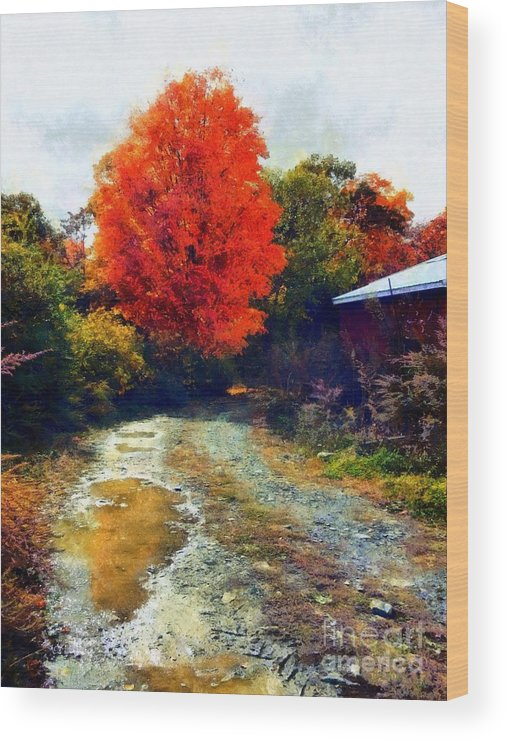 Dirt Road Wood Print featuring the photograph Down A Country Road - Autumn by Janine Riley