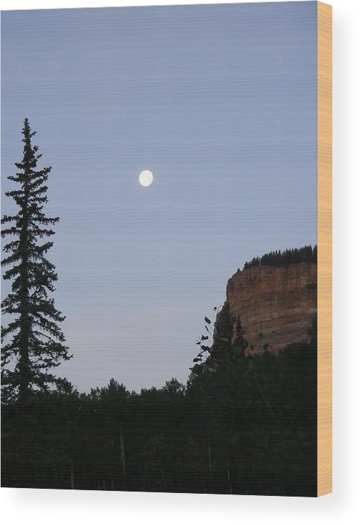 Nature Wood Print featuring the photograph Durango by Peter McIntosh