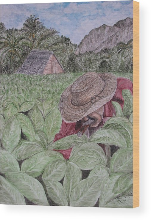 Tobacco Wood Print featuring the painting El Campo De Tabaco by Roberta Shaughnessy