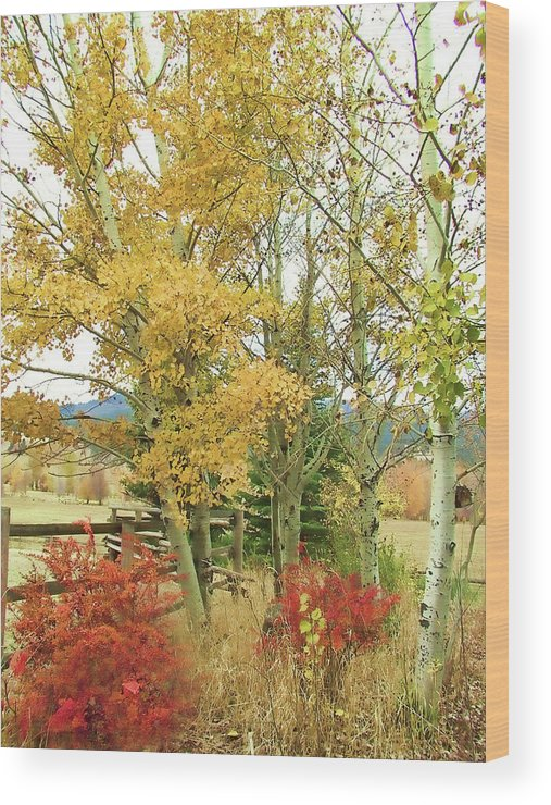 Fall Wood Print featuring the photograph Fall Splendor by Debby Schoeningh
