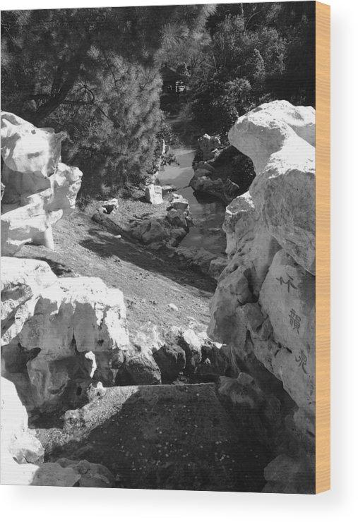 Landscape Wood Print featuring the photograph Fantasyland by Purvis Jordan