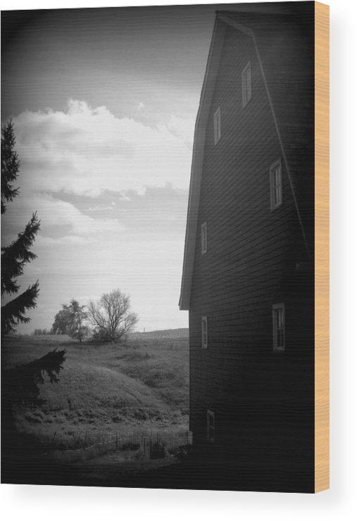 Barn Wood Print featuring the photograph Farm Life by Joni Moseng