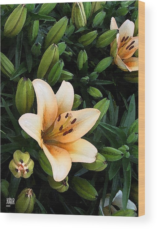 Digital Painting Wood Print featuring the digital art First Blooms by Michele Caporaso