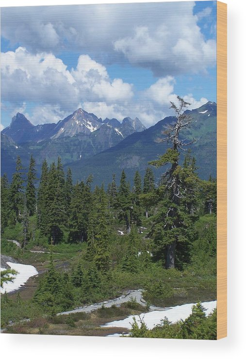 Cascades Wood Print featuring the photograph Fisher Chimney And Mt. Shuksan by Gene Ritchhart