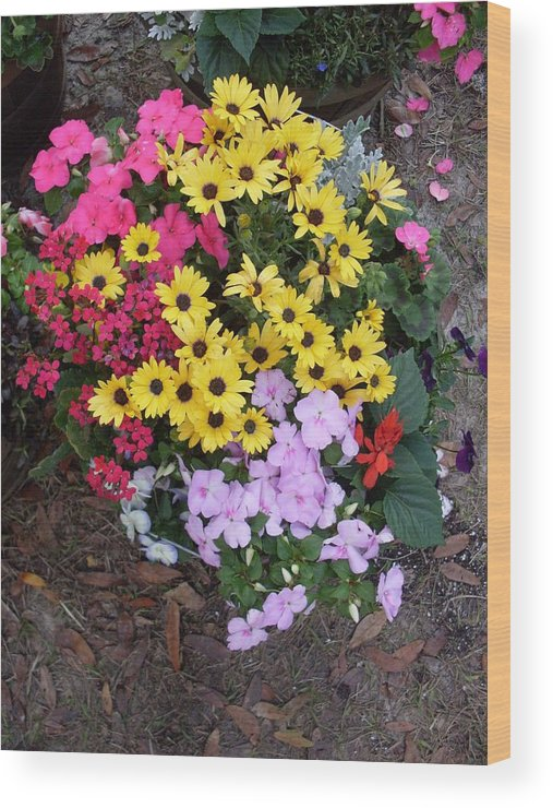 Florida Wood Print featuring the photograph Florida Spring Flowers by Warren Thompson