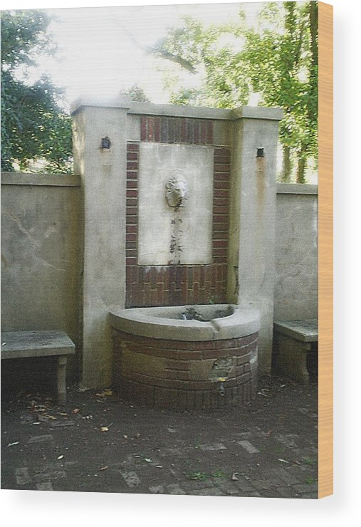 Fountain Wood Print featuring the photograph Forgotten Fountain by Scarlett Royal