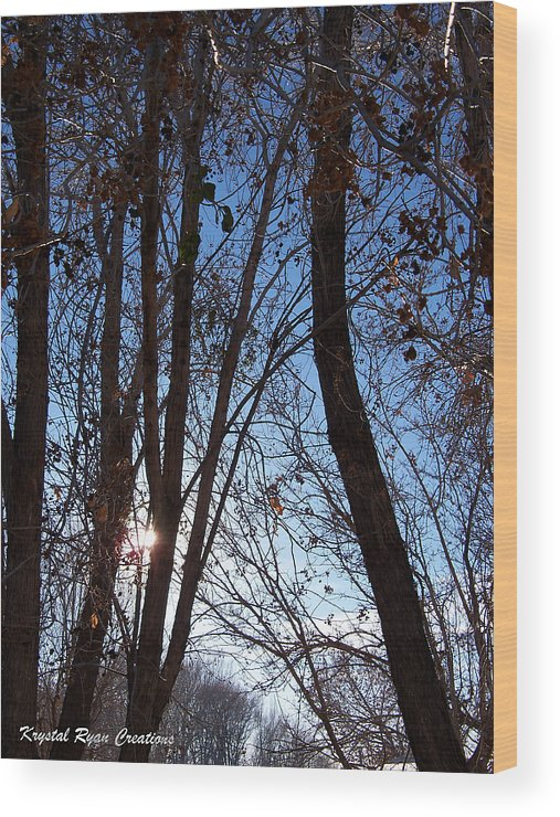 Glimmer Wood Print featuring the photograph Glimmer by Laura Roberson Chavez