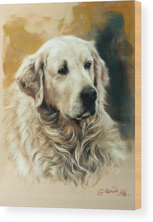 Labrador Wood Print featuring the drawing Golden Retriever by Gerard Mineo